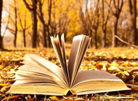SE GLI UOMINI LEGGESSERO PIÙ LIBRI SCRITTI DA DONNE, Riflessioni